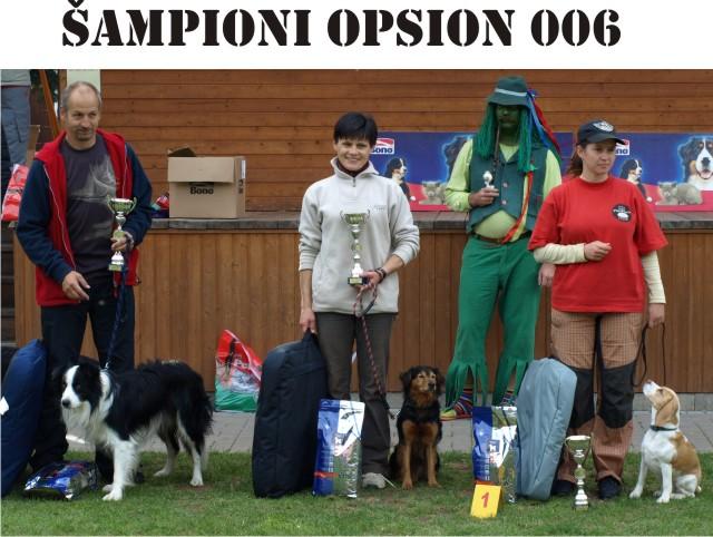 Šampioni